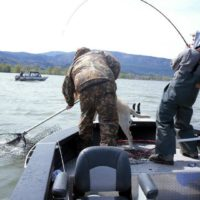 Oregon Coastal Steelhead fishing trips with St. Laurents Guide Service